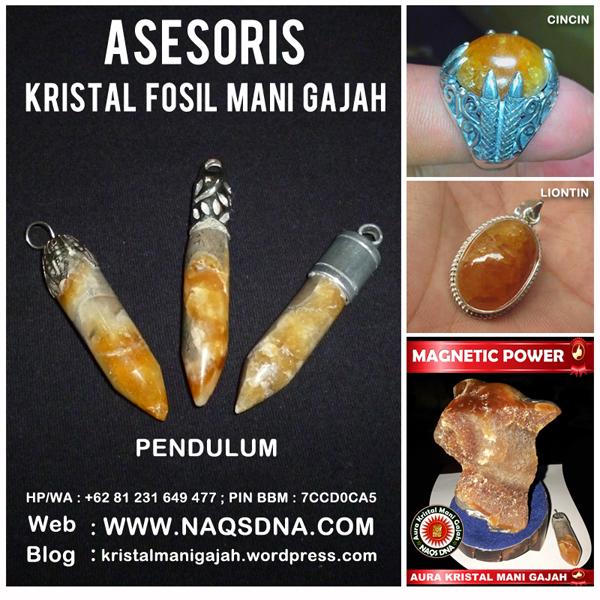 Asesoris Fosil Mani Gajah