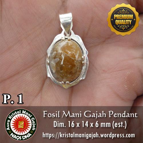 Fosil Mani Gajah Pendant 1