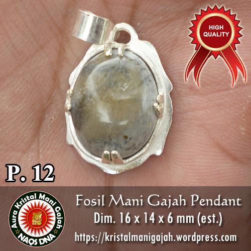 Fosil Mani Gajah Pendant