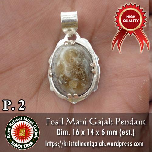 Fosil Mani Gajah Pendant 2