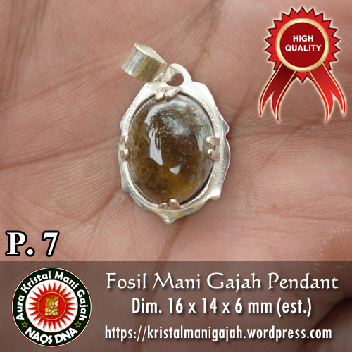 Fosil Mani Gajah Pendant 7