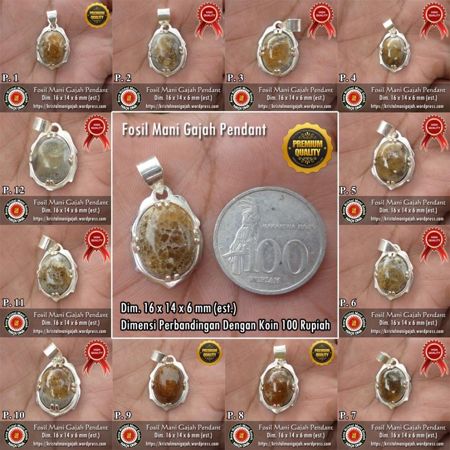 Fosil Mani Gajah Pendant collage