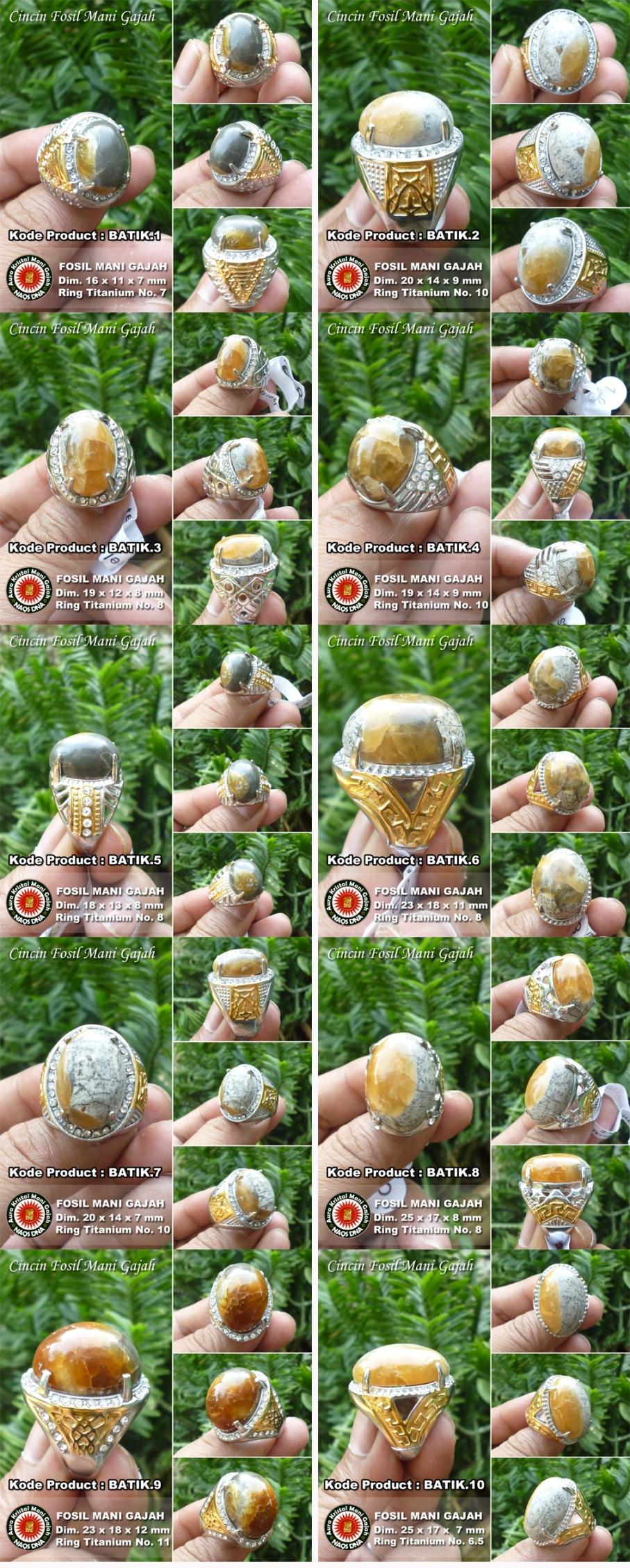 Cincin Fosil Mani Gajah Batik collage
