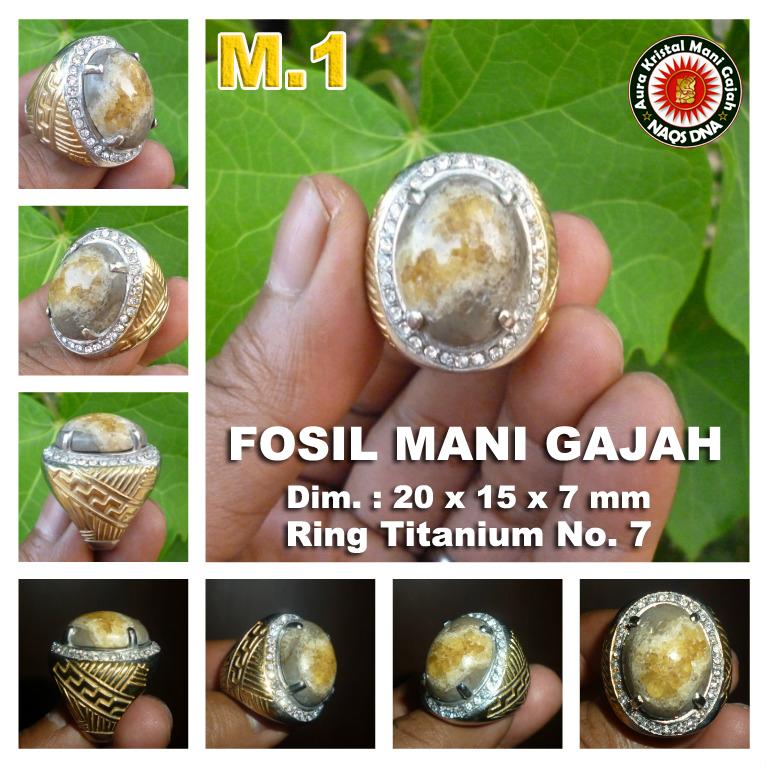 Cincin Mani Gajah m1