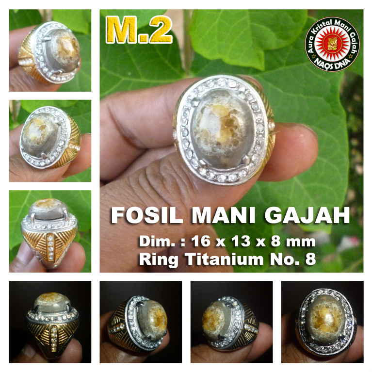 Cincin Mani Gajah m2
