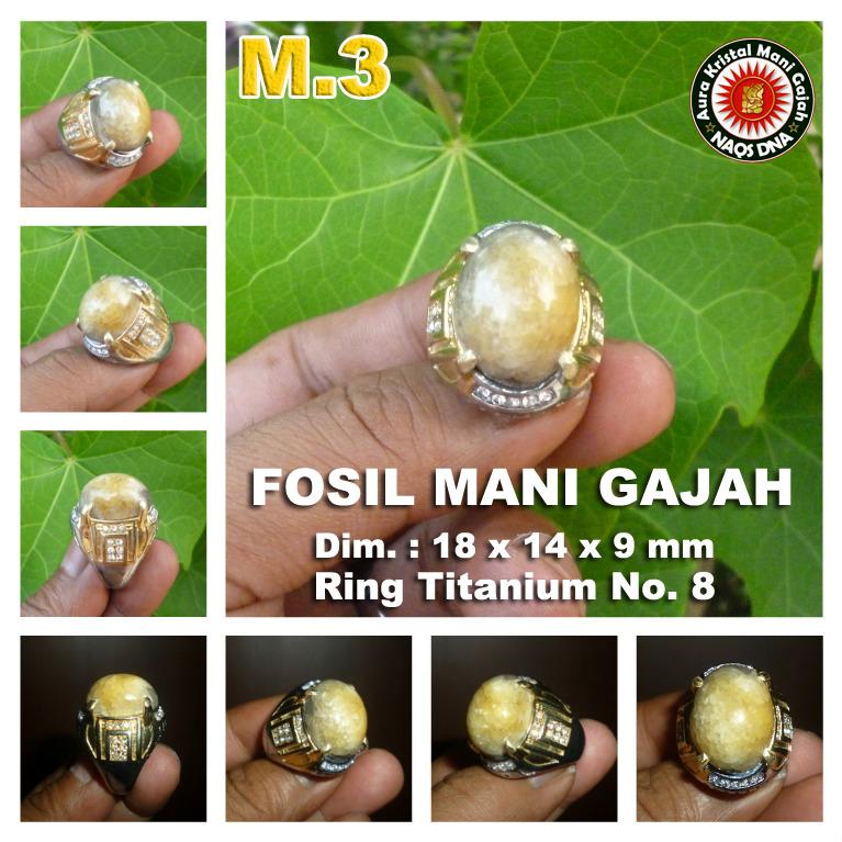 Cincin Mani Gajah m3