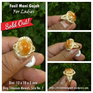 Fosil Mani Gajah Ladies 2 - Sold