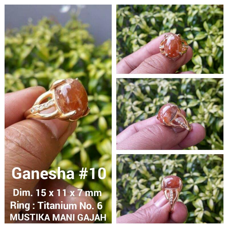 Ganesha 10