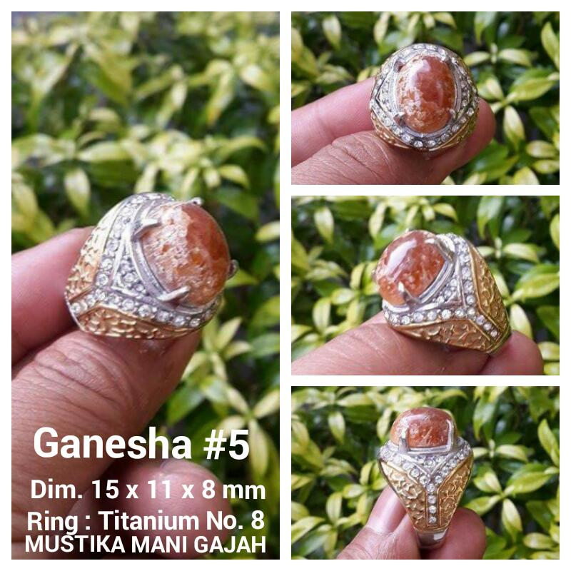 Ganesha 5
