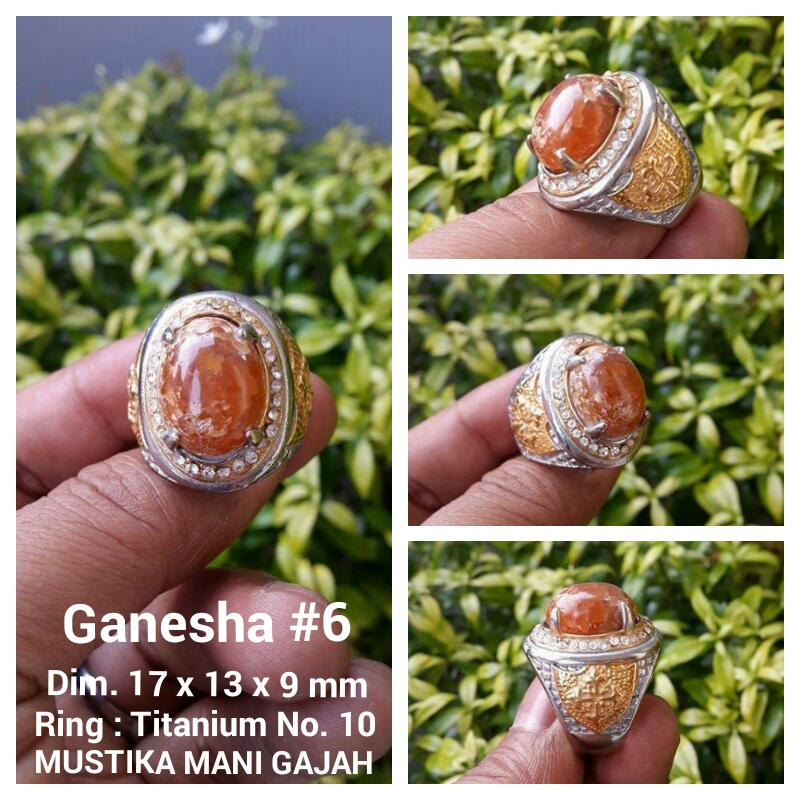 Ganesha 6