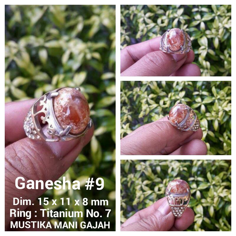 Ganesha 9