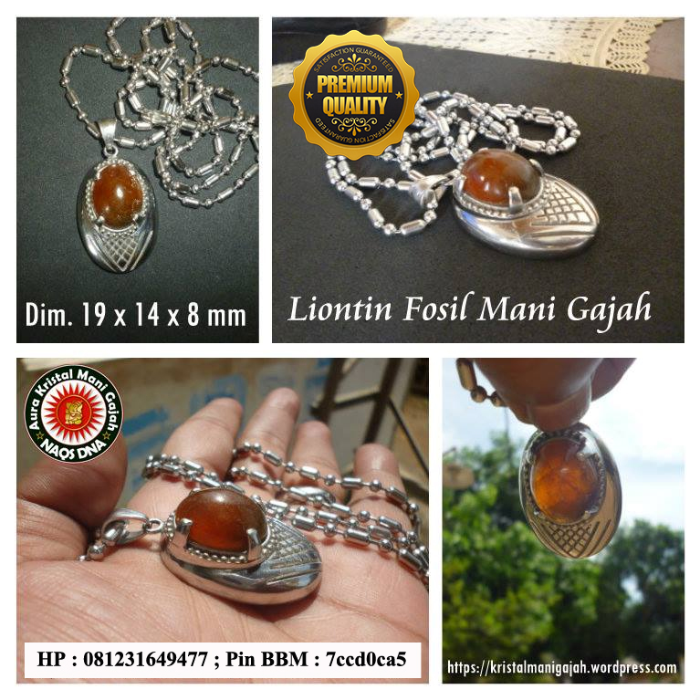 Liontin Fosil Mani Gajah Premium Quality Red