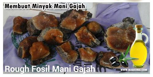 Minyak Mustika Mani Gajah Super