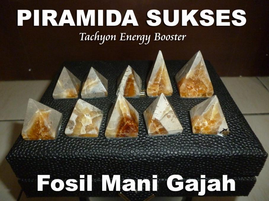 Piramid Fosil Mani Gajah